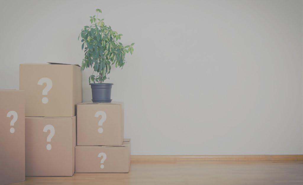 spørsmål om lagring